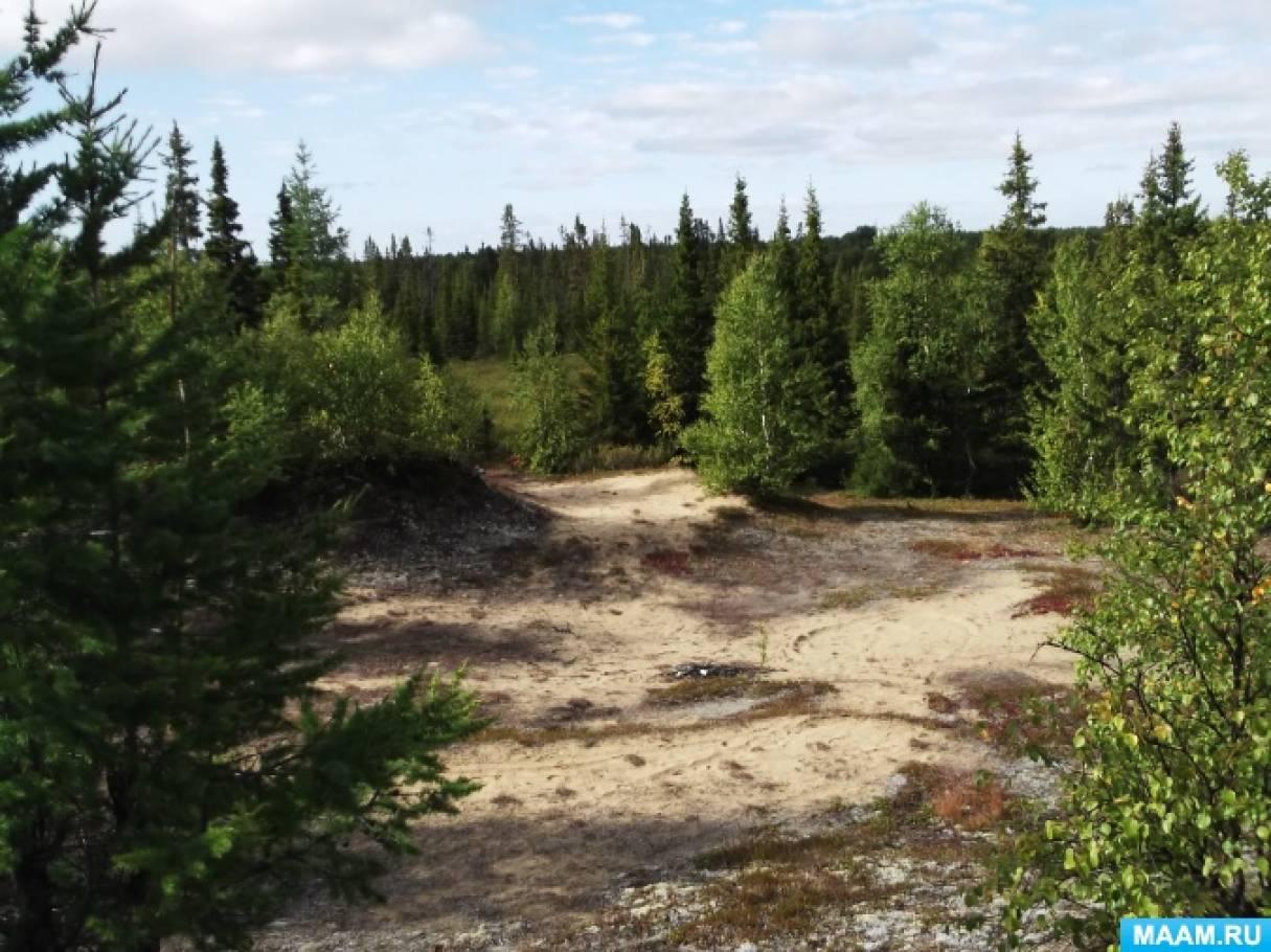 Акция «Берегите лес» в год добровольца