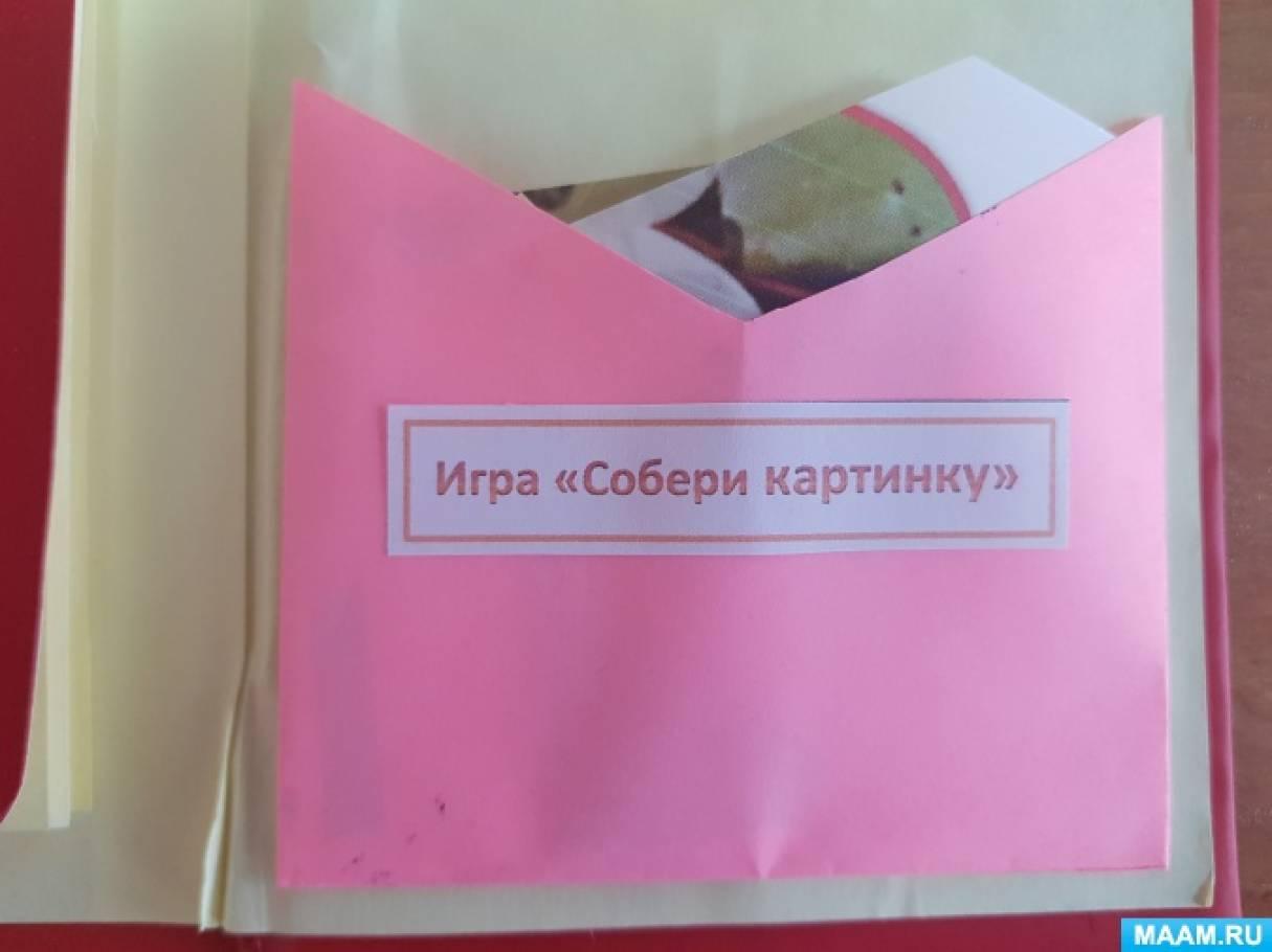 Красная книга лэпбук кармашки картинки
