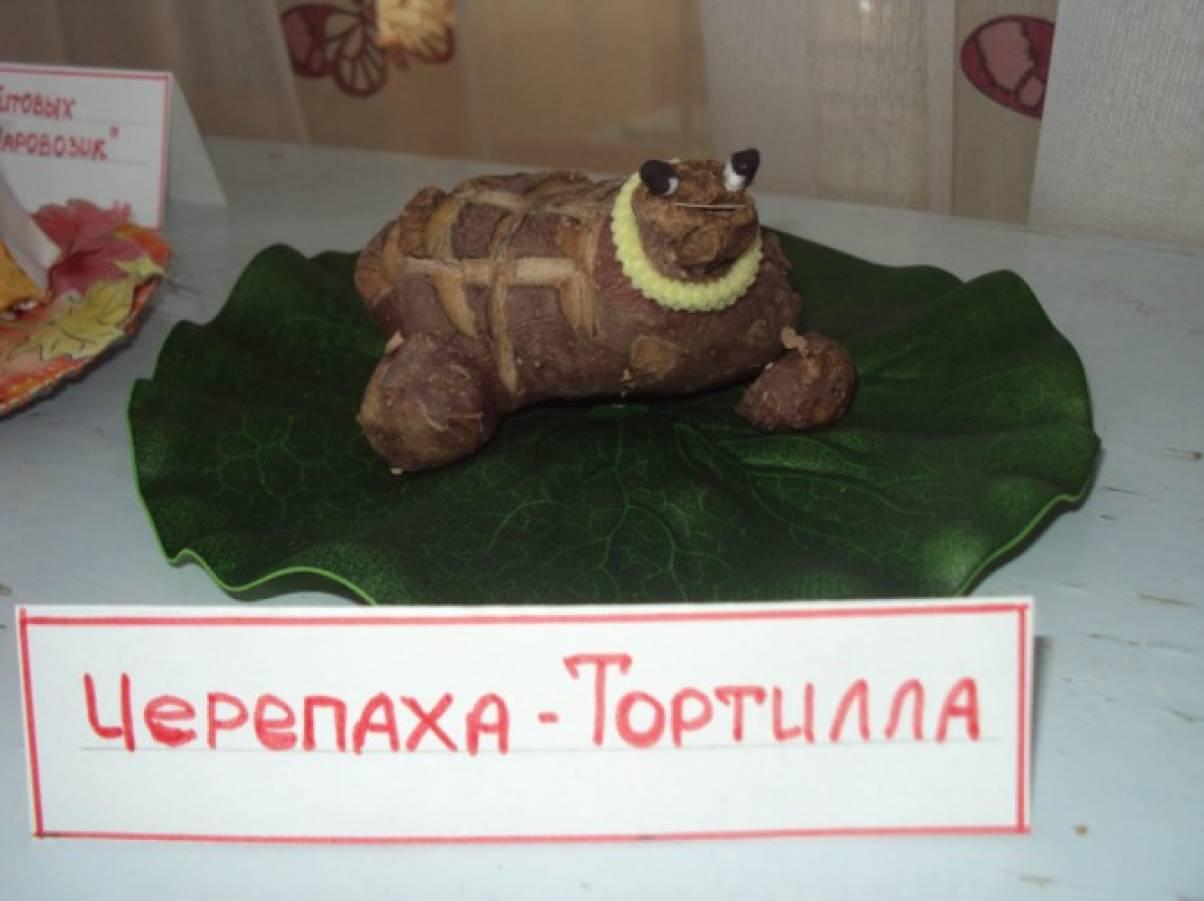 Поделка черепаха из картошки