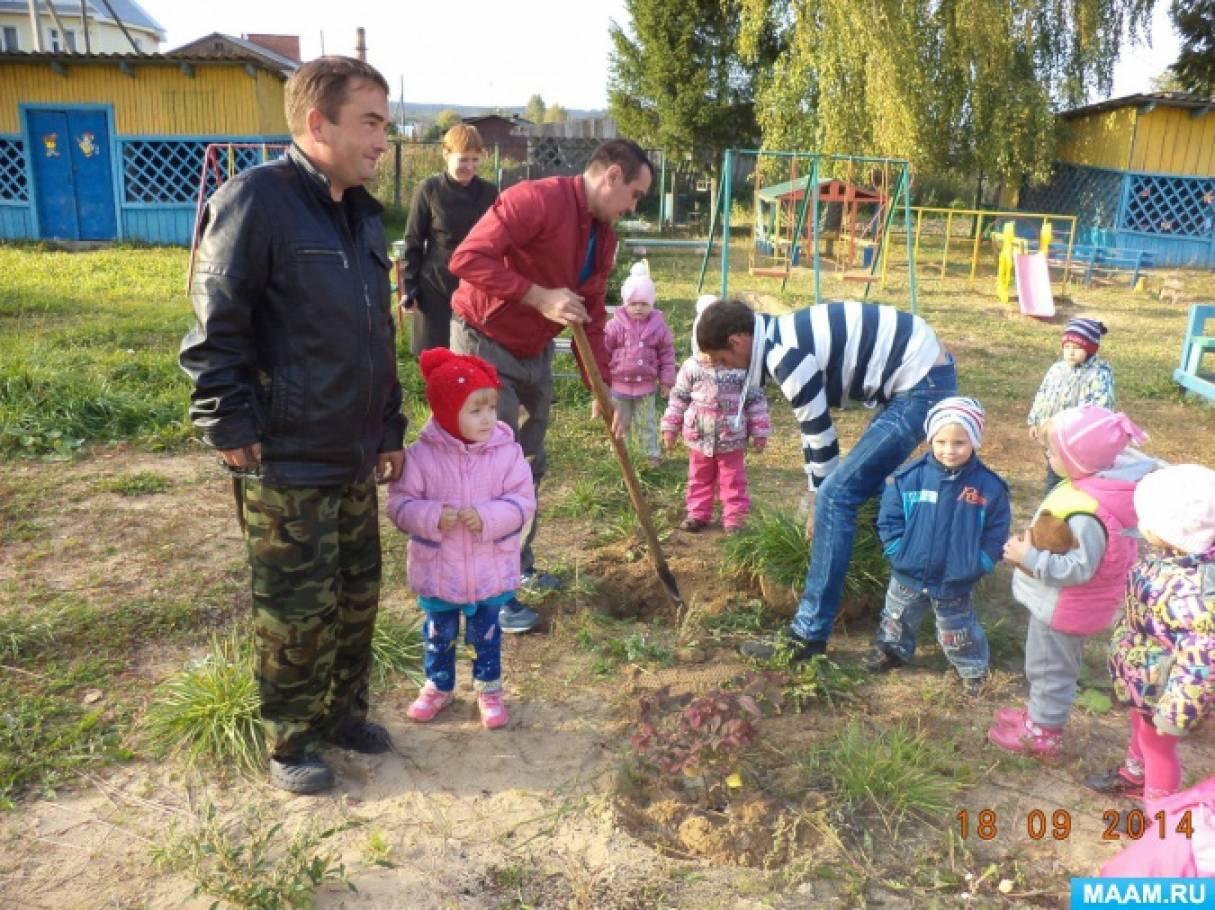 Акция по экологии. «Посади свое дерево»