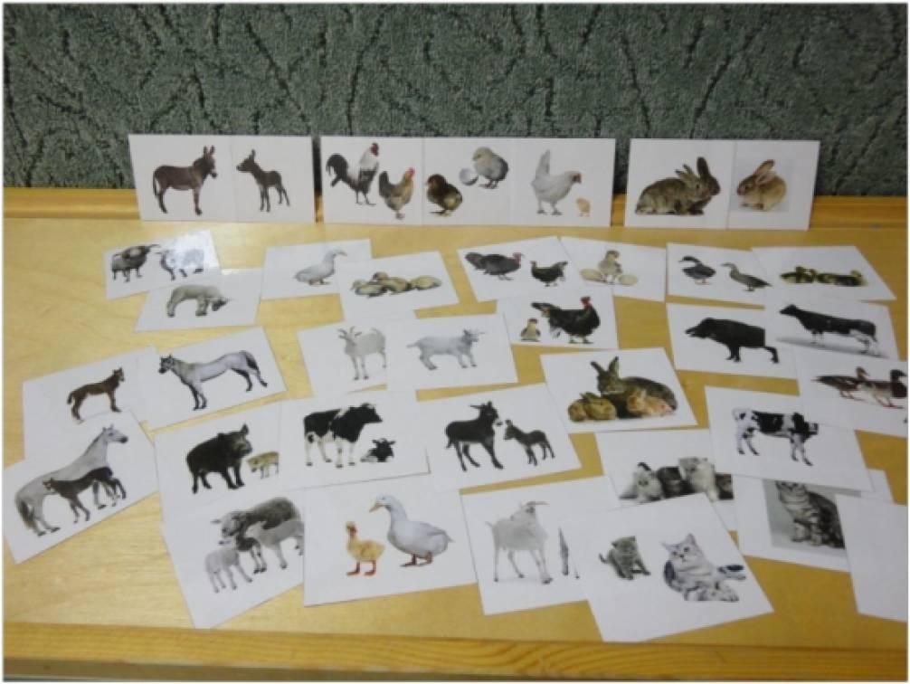 знакомство с животными цель