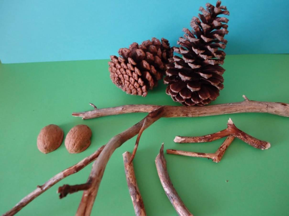 Легкие поделки из природного материала своими руками детям
