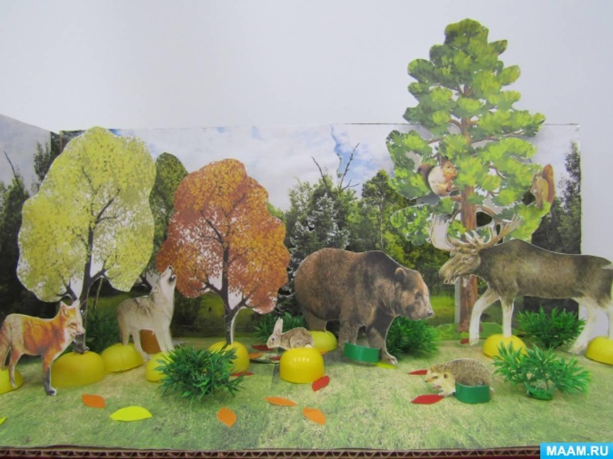 Картинки для макета дикие животные