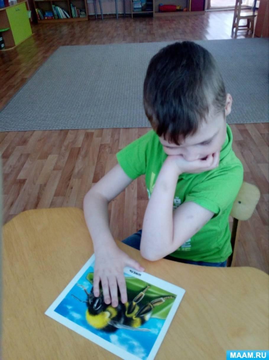 Фотоотчёт «Мир насекомых» для детей группы «Особый ребёнок»