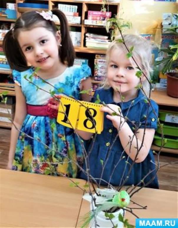Эксперимент «Выгонка листочков березы» с детьми старшей группы