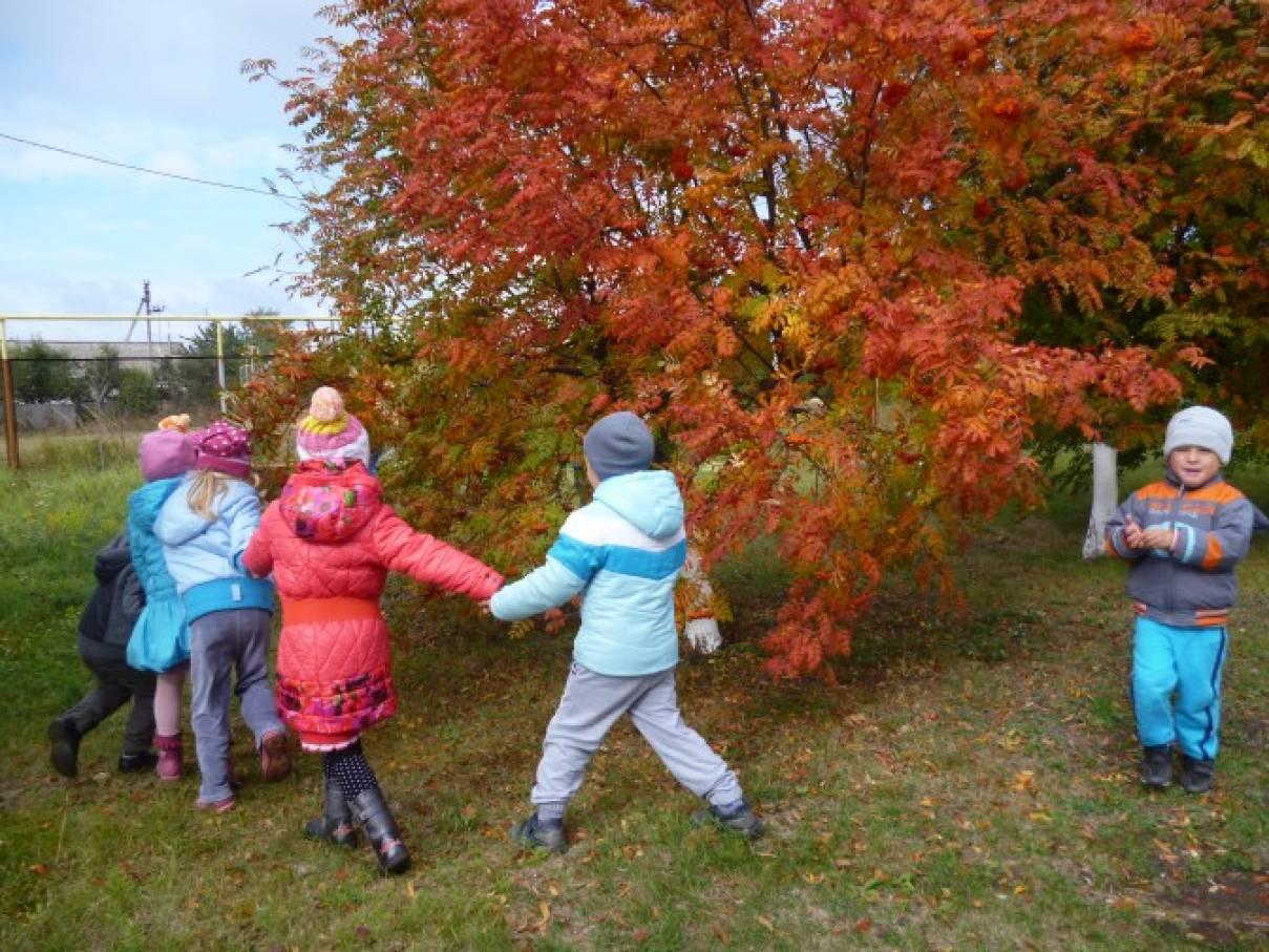 проект экологическая тропа осенью