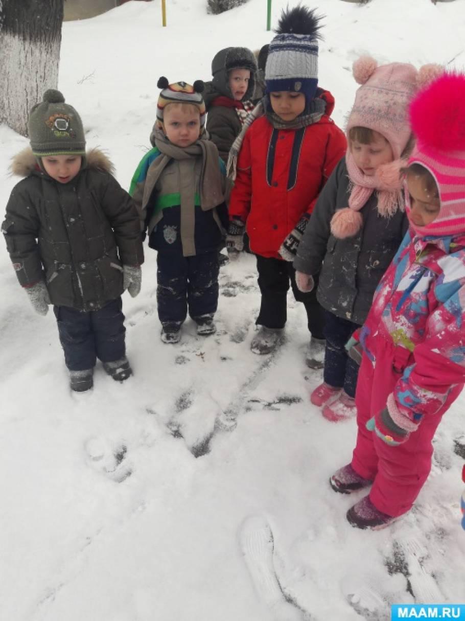 Фотоотчет о наблюдении на прогулке с детьми за следами птиц на снегу