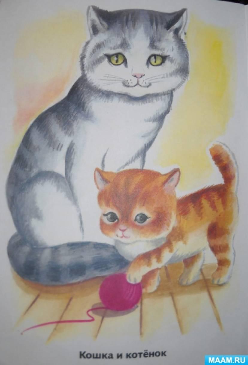 Успение пресвятой, кошка с котенком картинка для детей