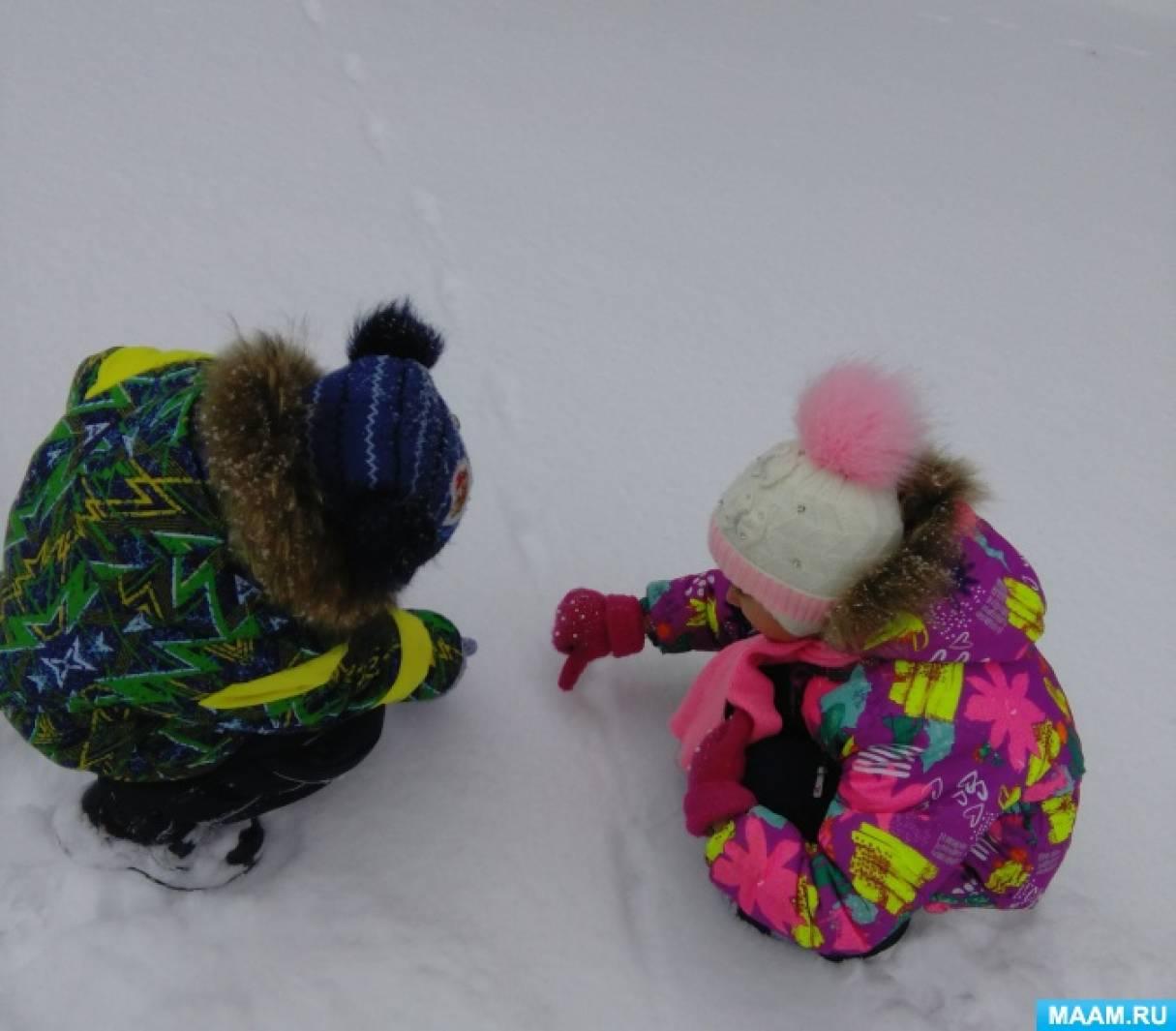 Проектная деятельность в детском саду «Почему нельзя есть снег?»