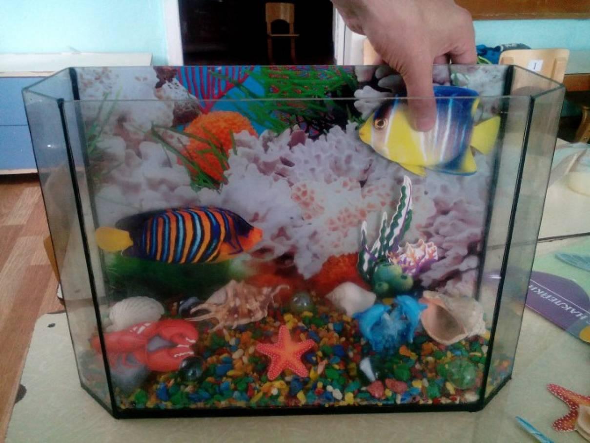 Сухой аквариум своими руками фото