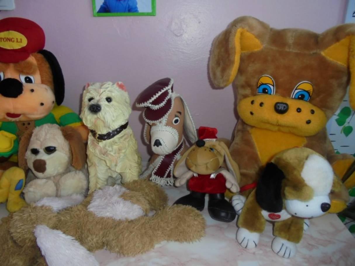 Выставка «Такие разные собачки»