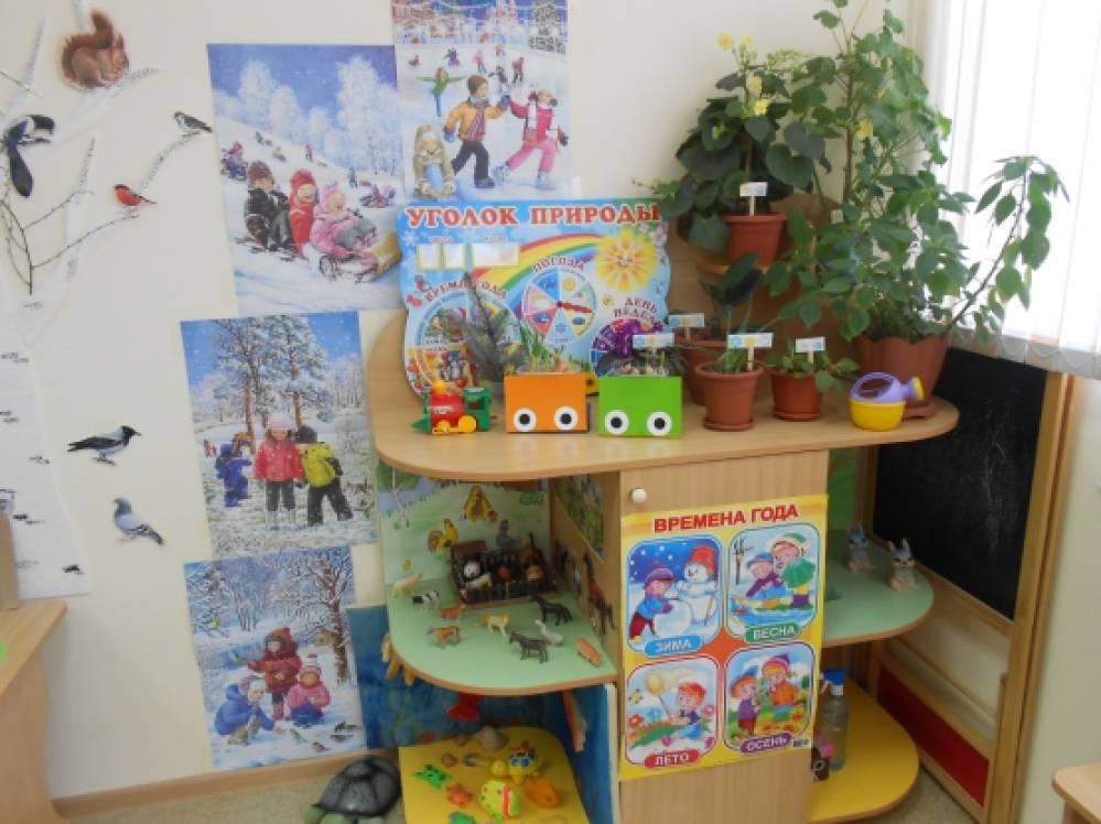 Схемы картинки в уголке природы детсад