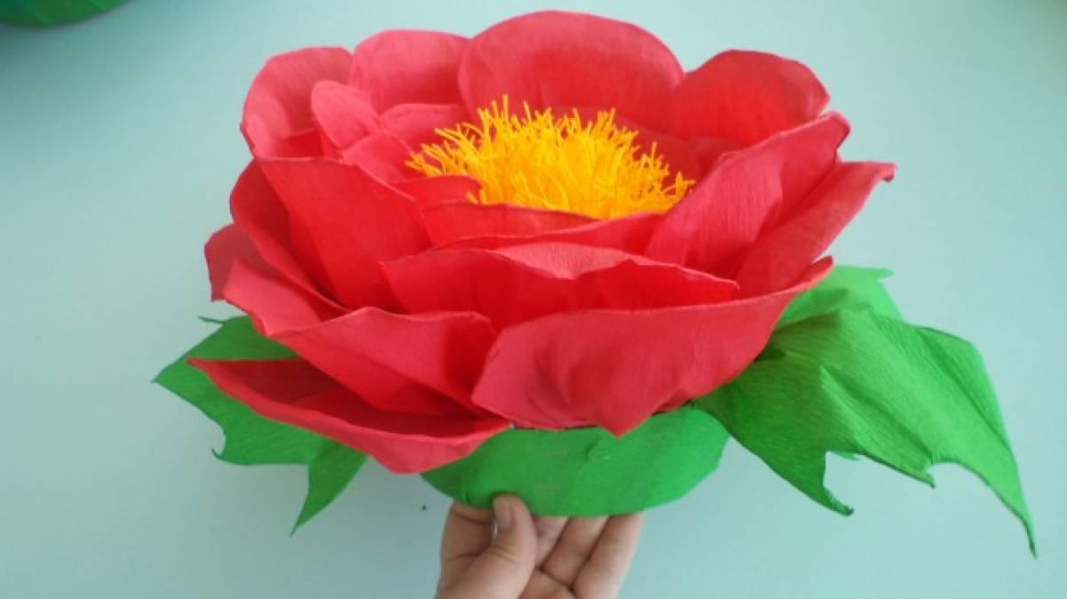 Шапочки цветов из гофрированной бумаги своими руками