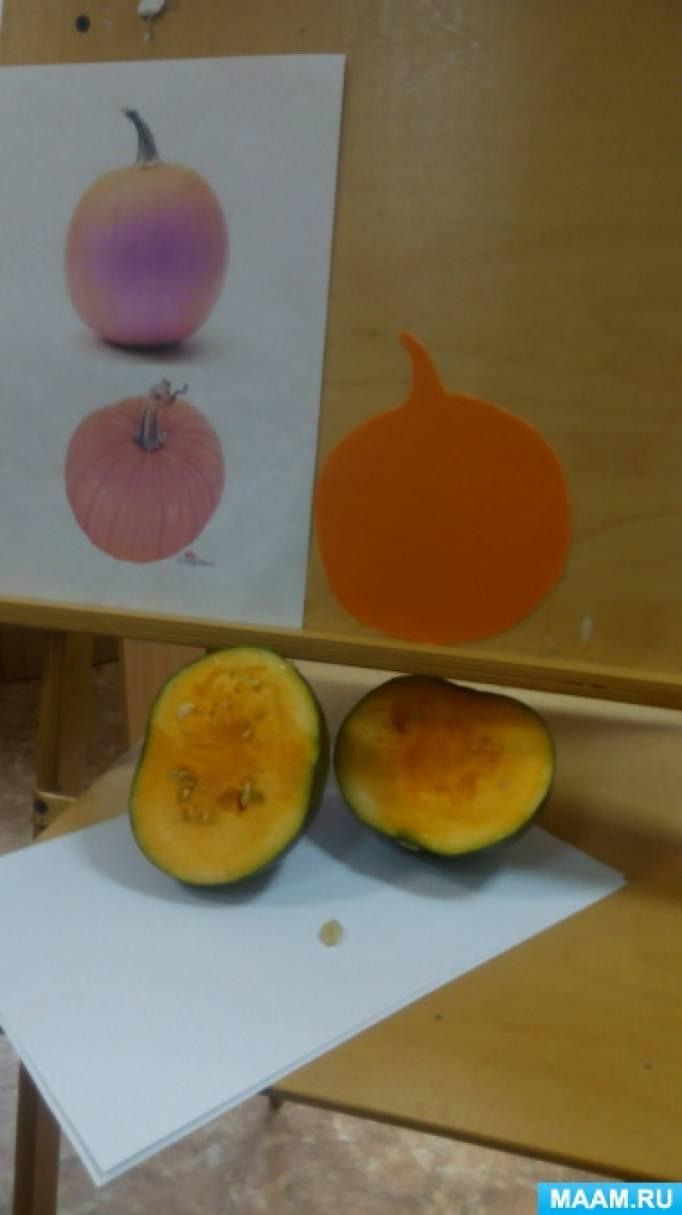 Фотоотчет по рисованию в средней группе «Наша тыква золотая».