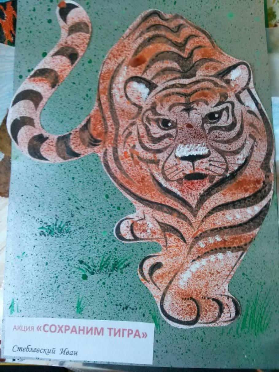 Детские рисунки в рамках акции «Сохраним тигра» (фотоотчёт)