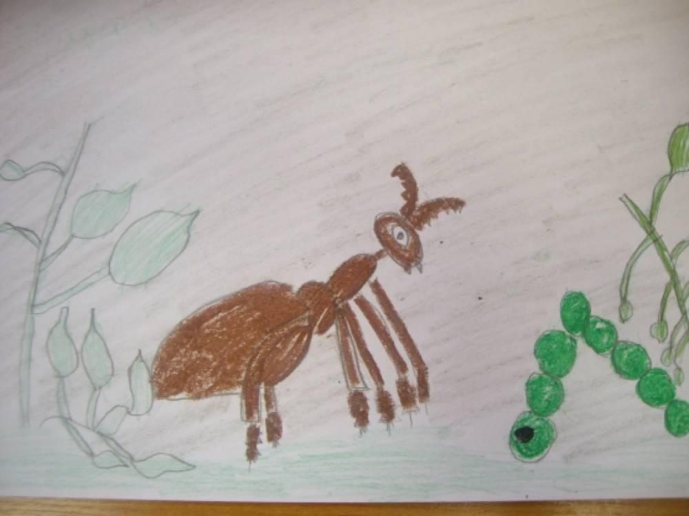 знакомство детей с творчеством бианки