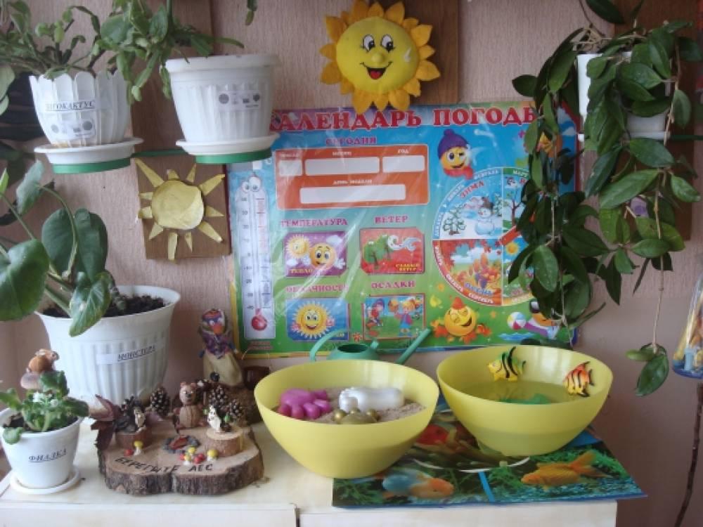 Поделки из природного материала детям своими руками фото