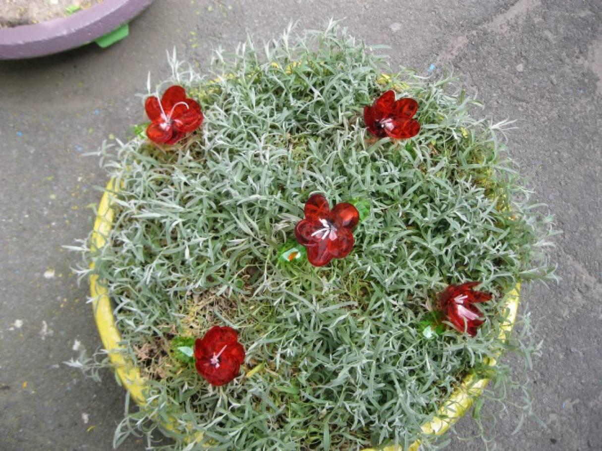Украшаем клумбу к майским праздникам. Тюльпаны из одноразовых ложек