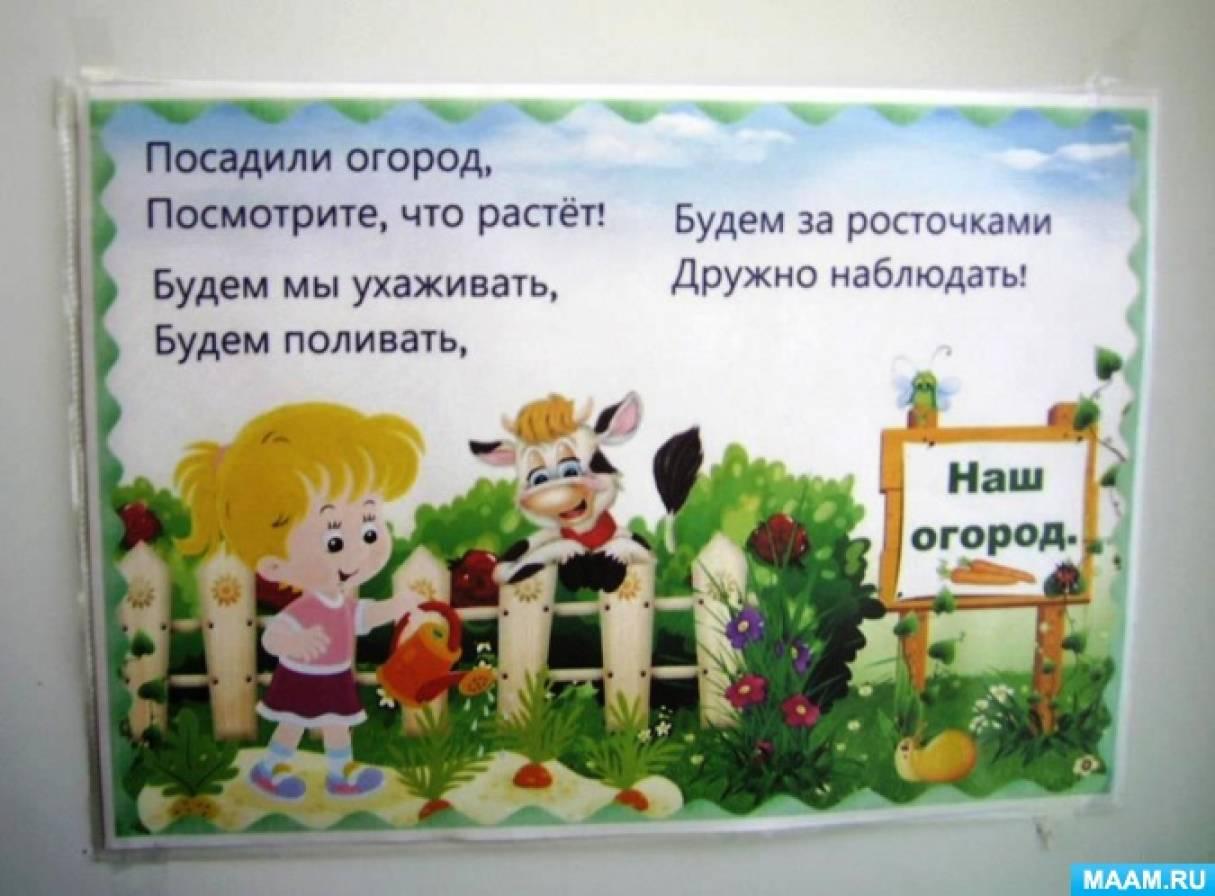 Картинка с надписью огород на окне