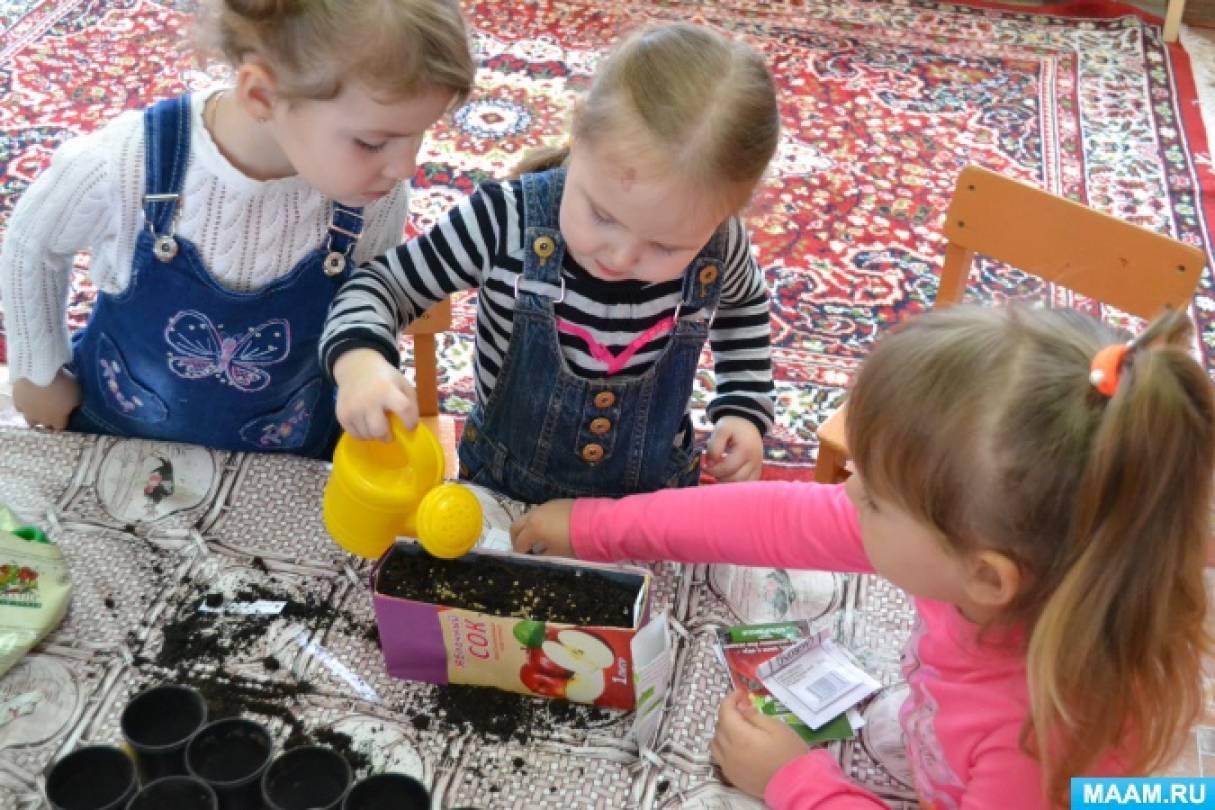 знакомство детей с растениями в детском саду