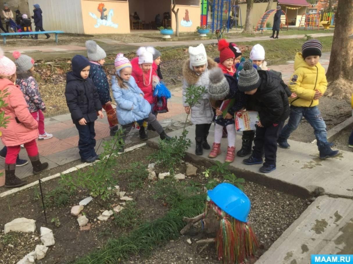 Фотоотчёт о наблюдениях с детьми старшей группы «Первоцветы»