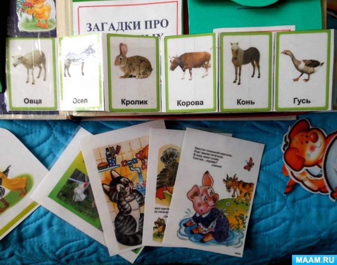 Как сделать лэпбук для детей на тему домашние животные