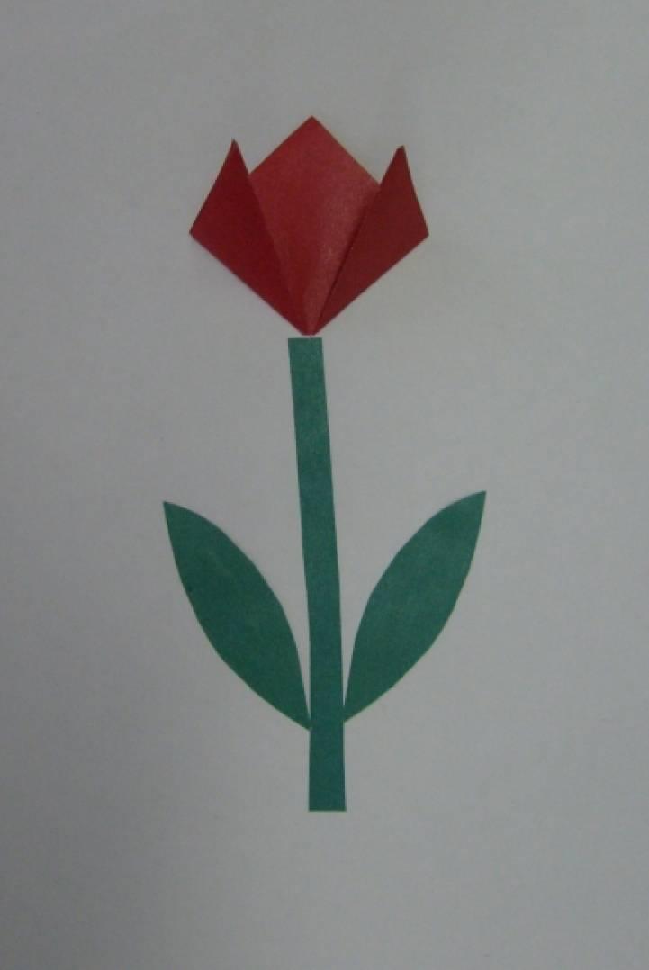 Конструирование тюльпана из бумаги в средней группе