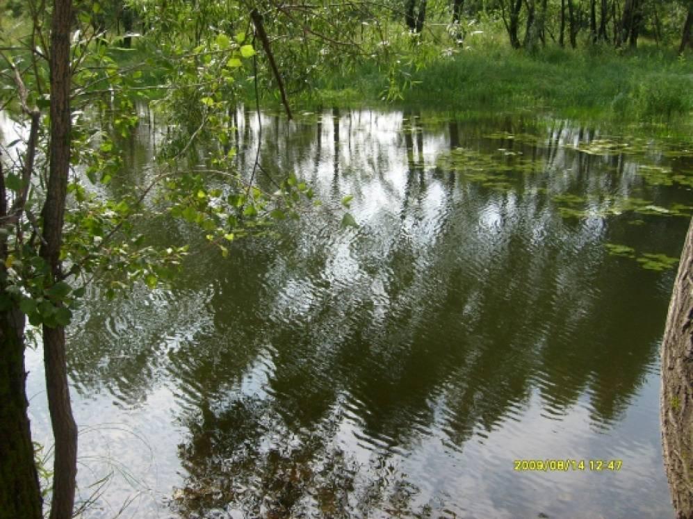 Прогулка по реке томь