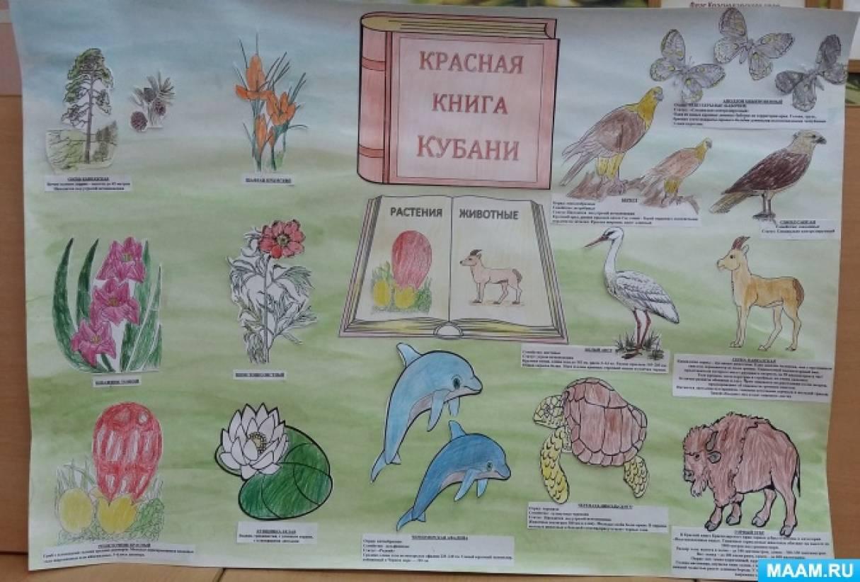 сценарии по знакомству с конституцией россии