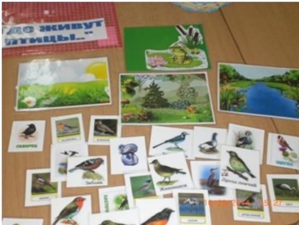 Дидактическая игра «Найди где живет птица?» для детей подготовительной группы
