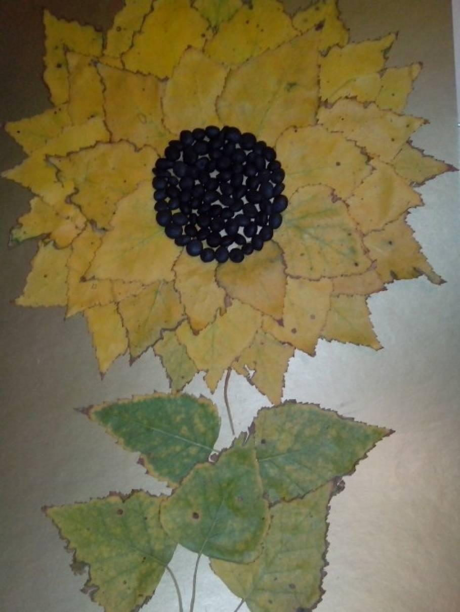 Аппликация «Наш подсолнух из листьев березы»