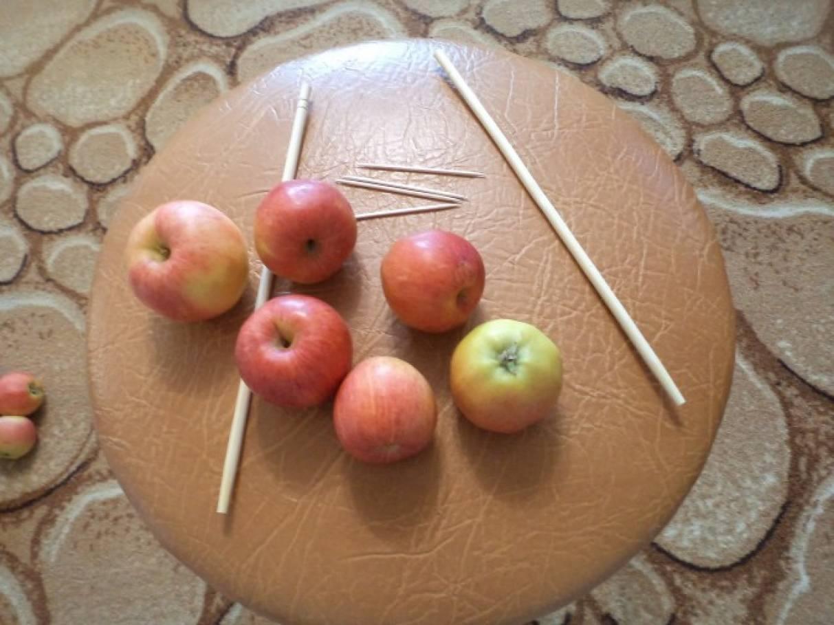 Поделка из свежего яблока 882