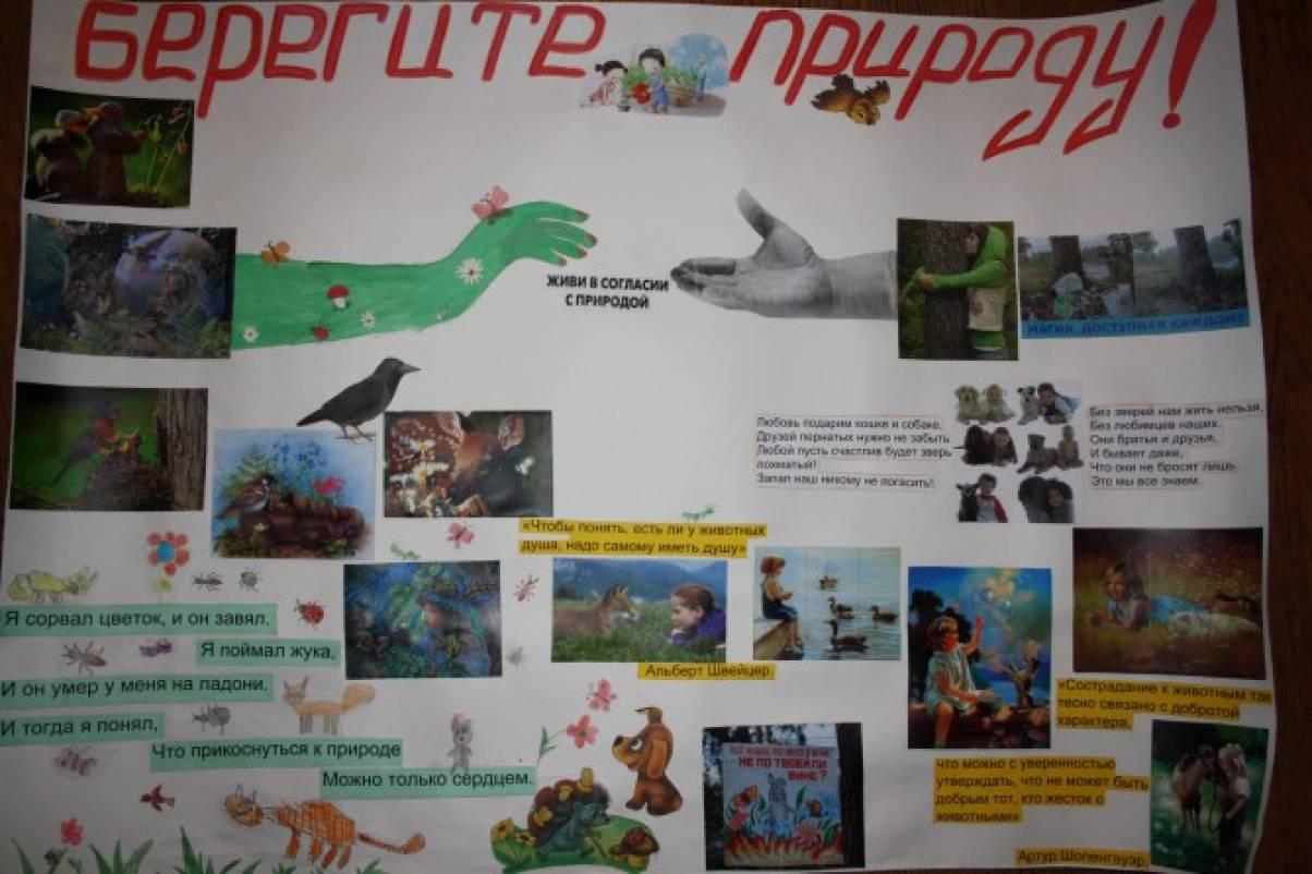 Картинки для дошкольников береги природу