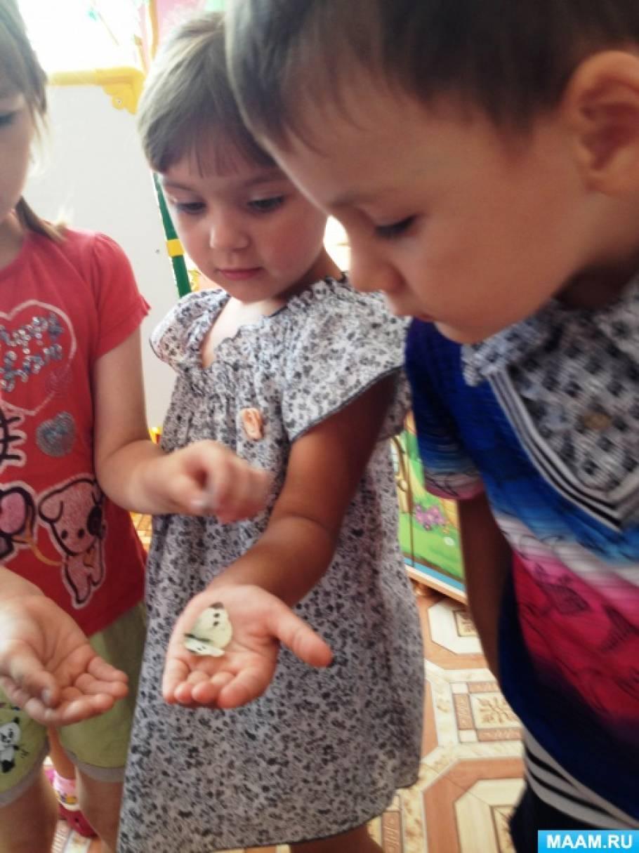 Наблюдение за насекомыми