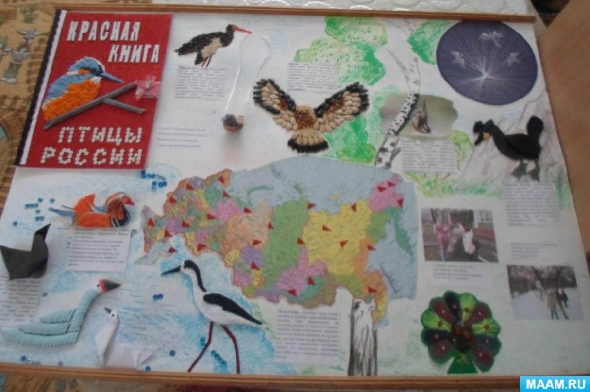 Стенгазета «Красная книга. Птицы России»