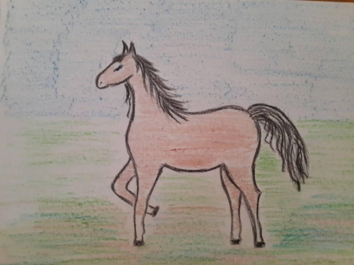 Мастер-класс «Рисование лошади поэтапно для детей подготовительной группы»