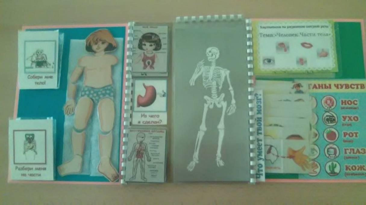 знакомство с частями тела для детского сада