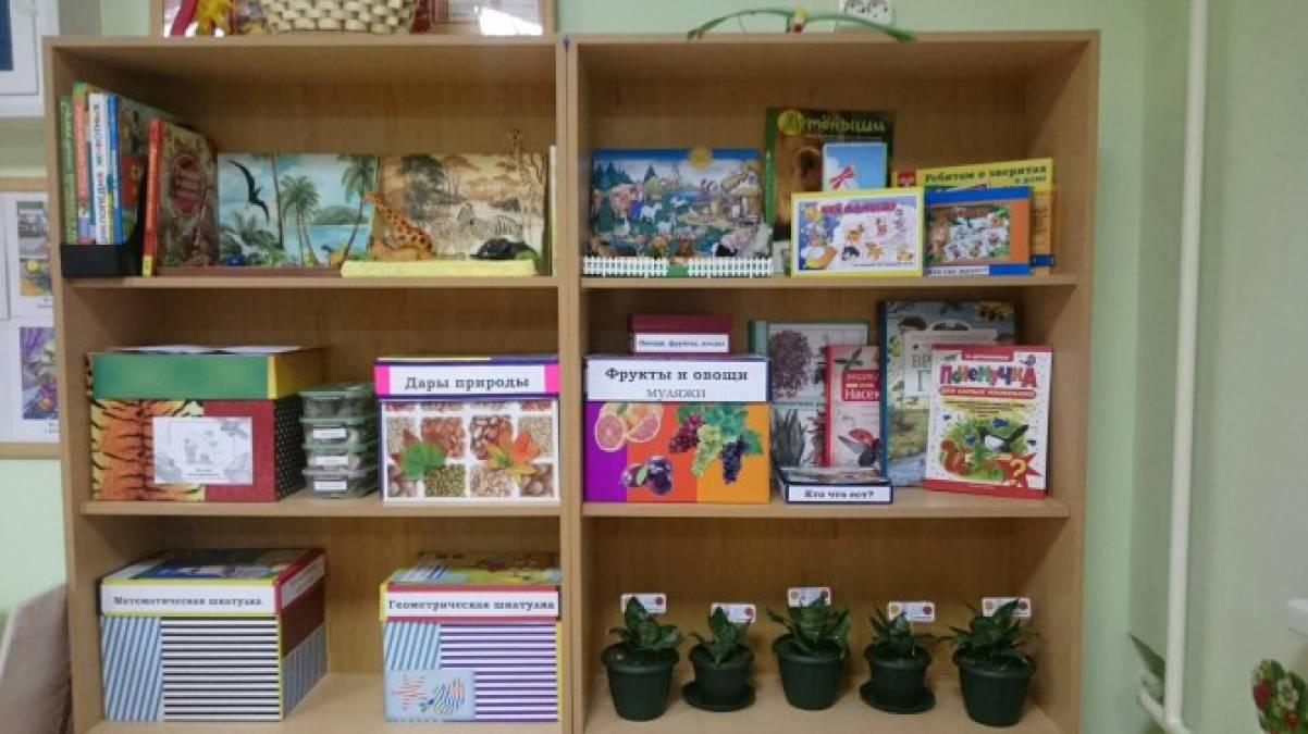 Макеты для уголка природы в детском саду своими руками 6