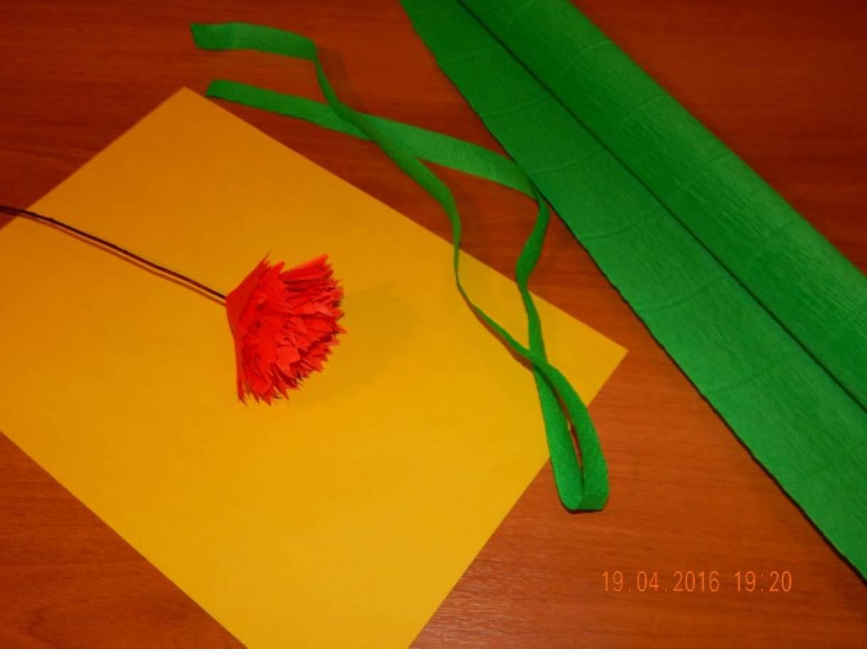Гвоздики своими руками из гофрированной бумаги на 52