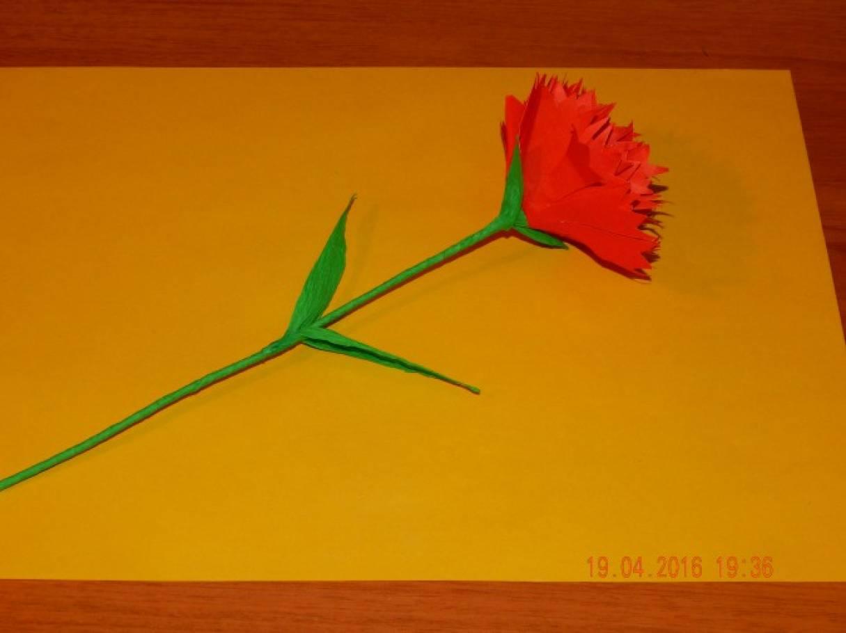 Гвоздики своими руками из бумаги для открытки, марта цветной бумаги