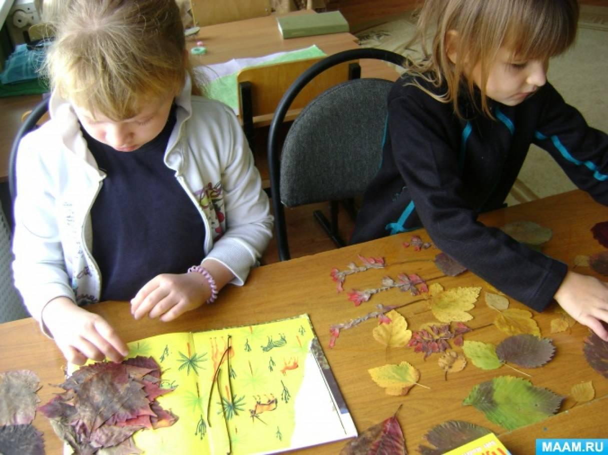 Детское творчество в технике аппликации из осенних листьев (фотоотчет). Воспитателям детских садов, школьным учителям и педагогам