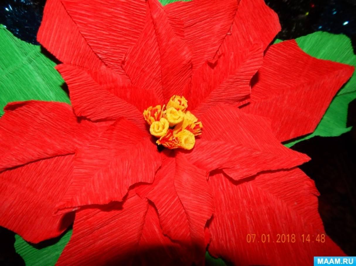 Мастер-класс «Пуансеттия или рождественская звезда» из гофрированной бумаги
