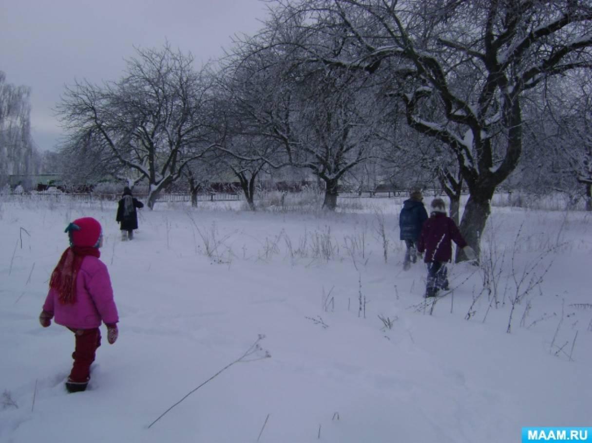 Конспект познавательной прогулки «Наблюдение за деревьями и кустарниками зимой»