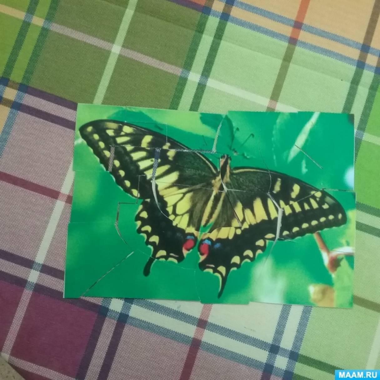 Лэпбук «Насекомые. Бабочки»