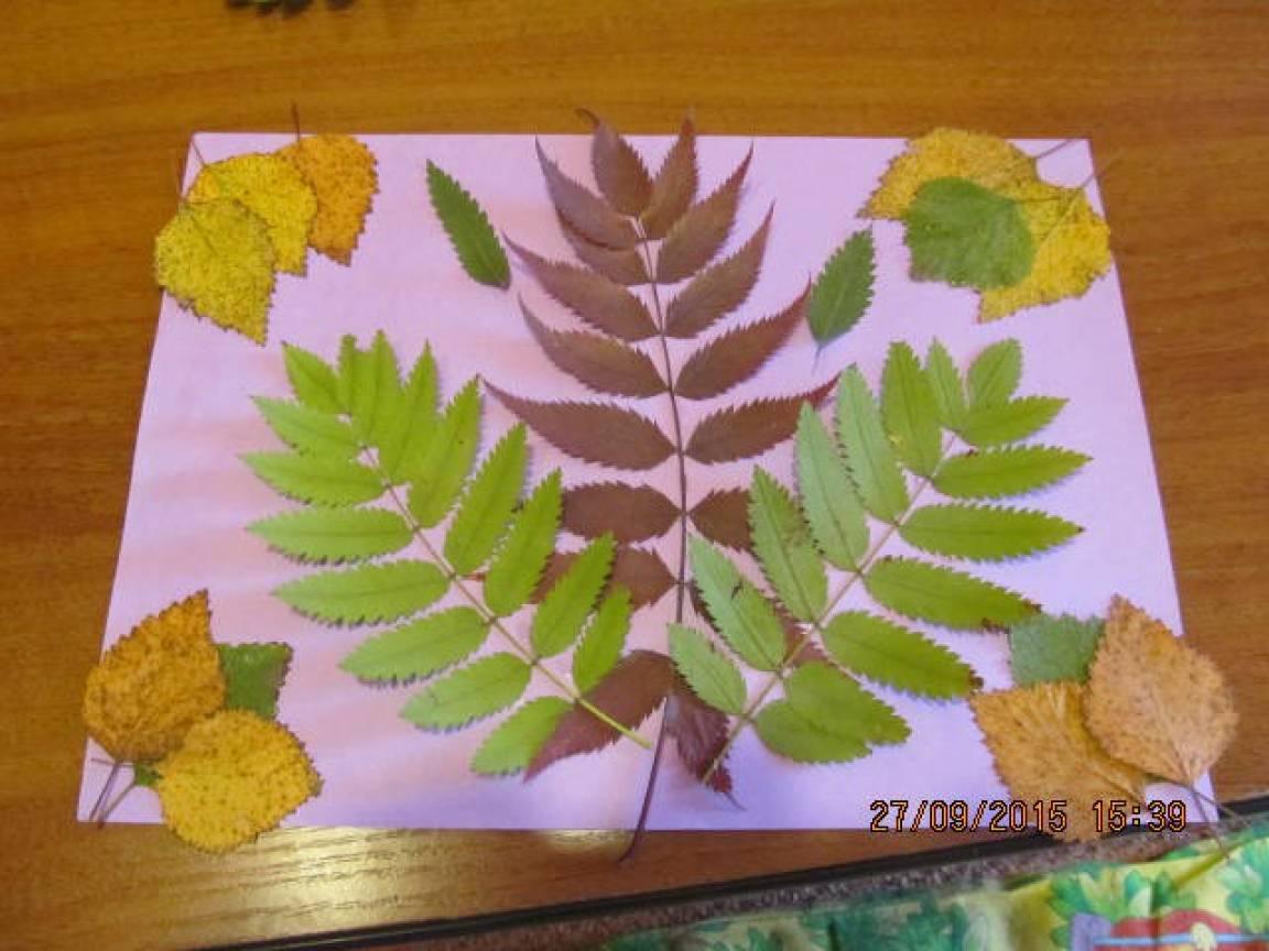 Мастер-класс по изготовлению коллажа из осенних листьев