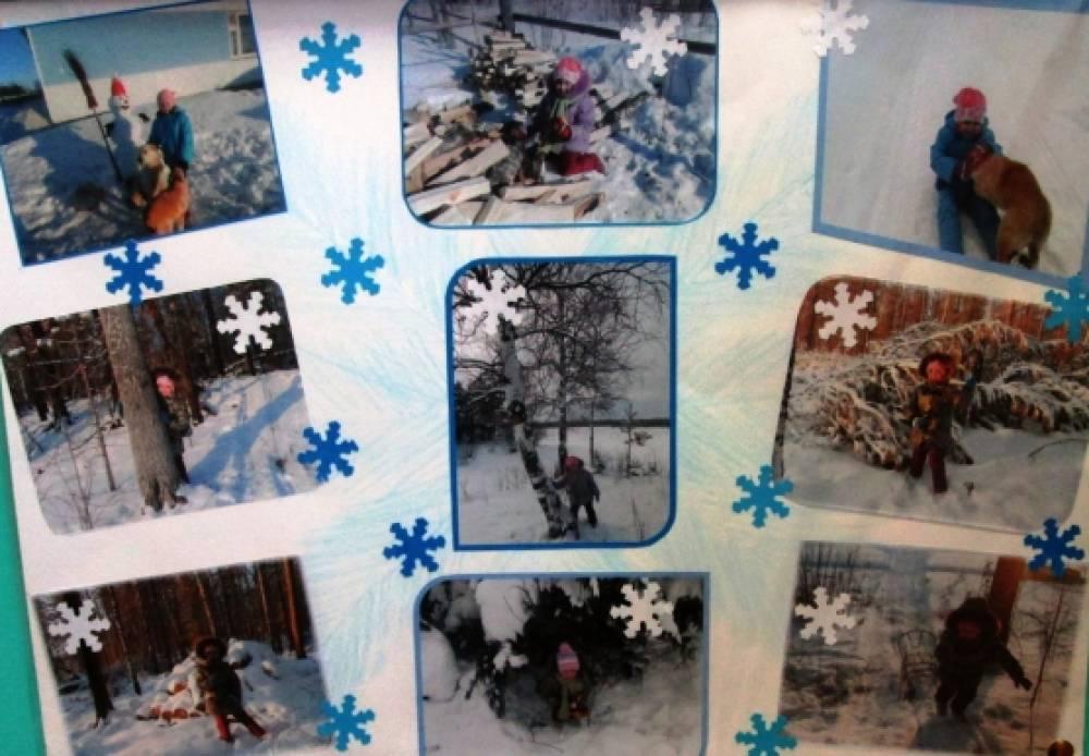 Зимний коллаж в детском саду своими руками - Restovoz.ru