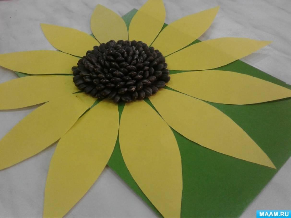 Поделки из семена подсолнечника