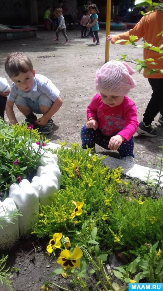 Краткосрочный проект для детей 2–3 лет «Цветочная поляна»