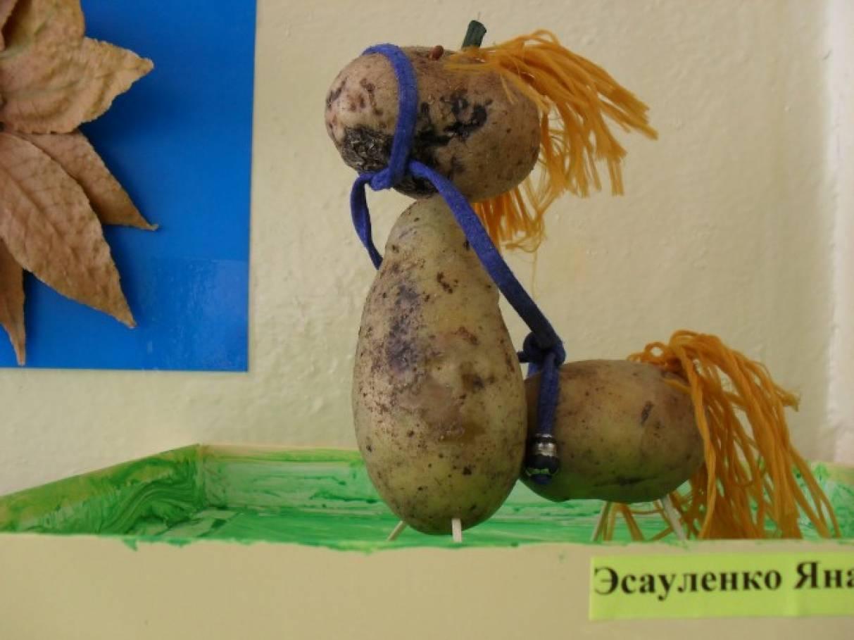 Поделки из овощей и картошки 35