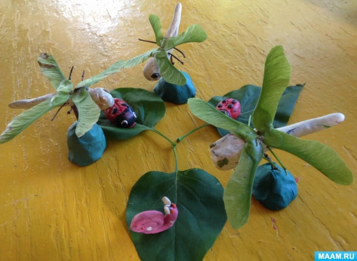 Летние поделки из природного материала детей подготовительной группы. Фотоотчет